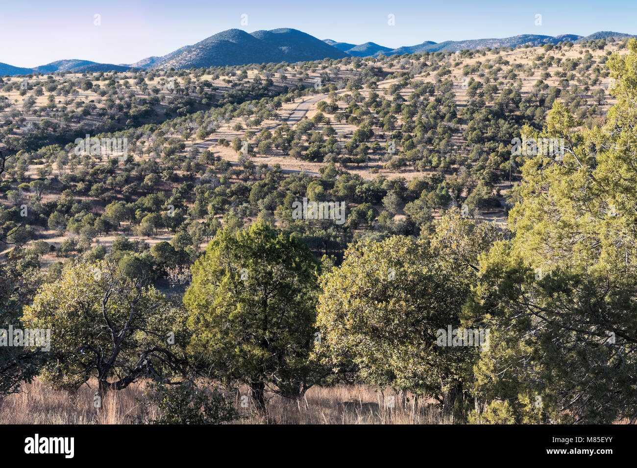 Southeastern Arizona, near Parker Canyon Lake, Scenic Route 83 is off in the distance. - Stock Image
