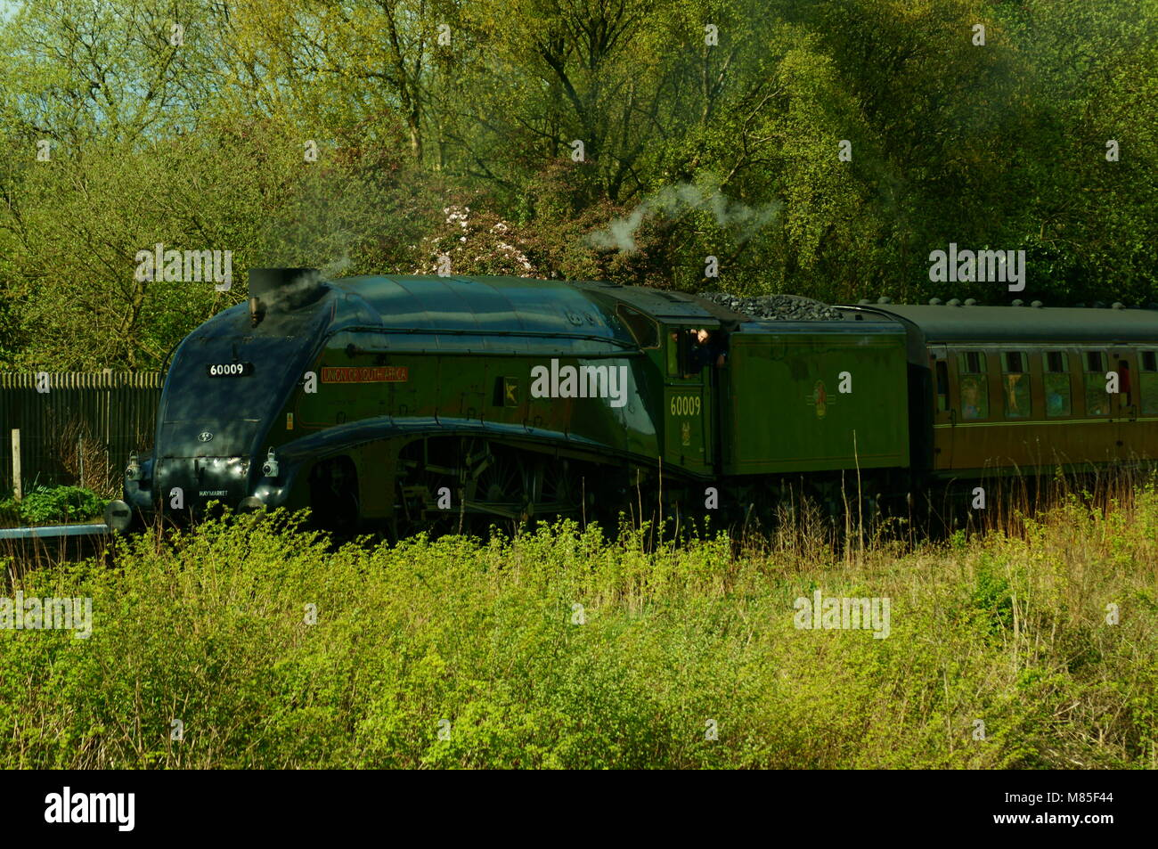 Union of South Africa A4 steam train leaving Irwell Vale Halt - Stock Image