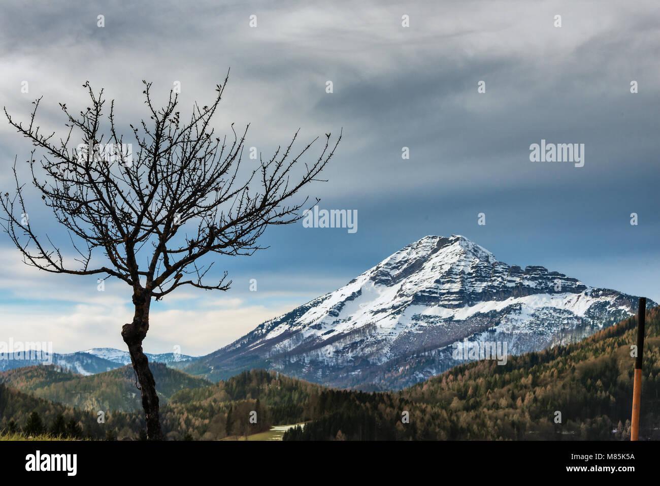 Blick auf Ötscher - Stock Image