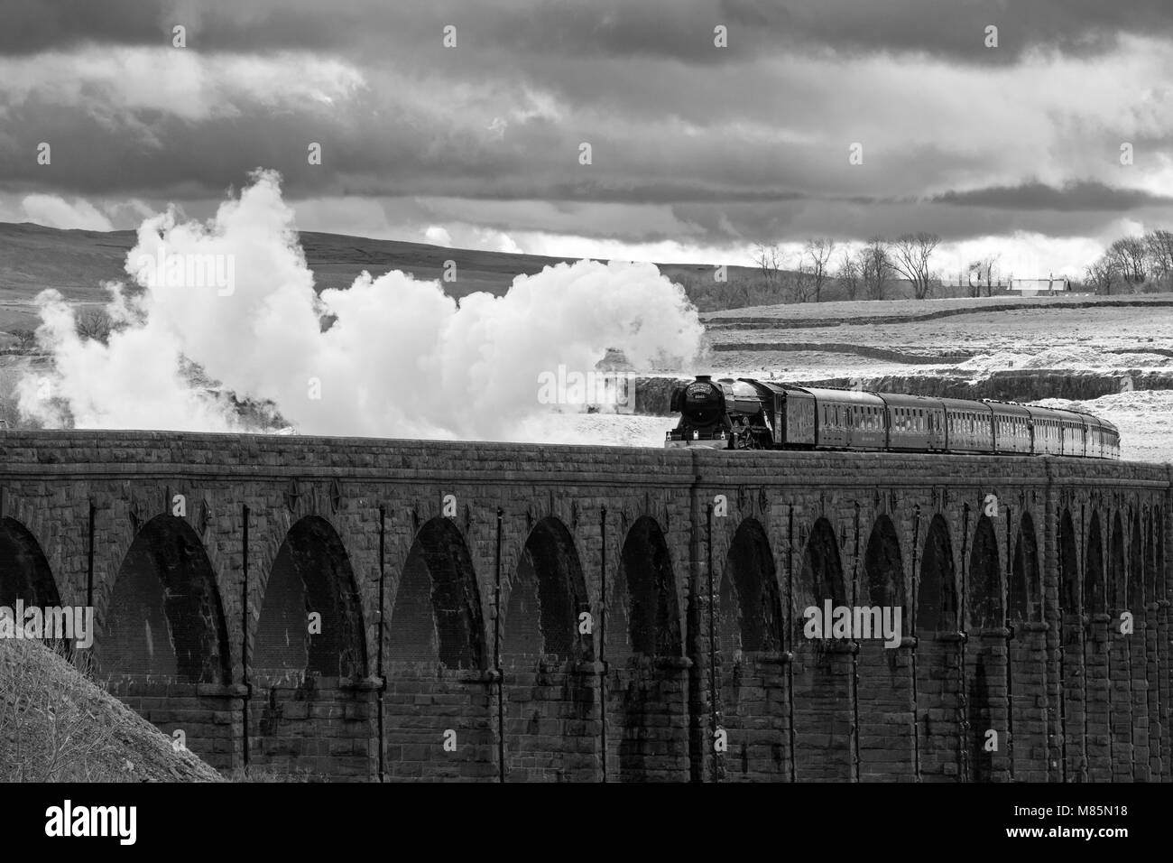 Puffing steam cloud, iconic locomotive LNER class A3 60103 Flying Scotsman, travels over arches of Ribblehead Viaduct - Stock Image