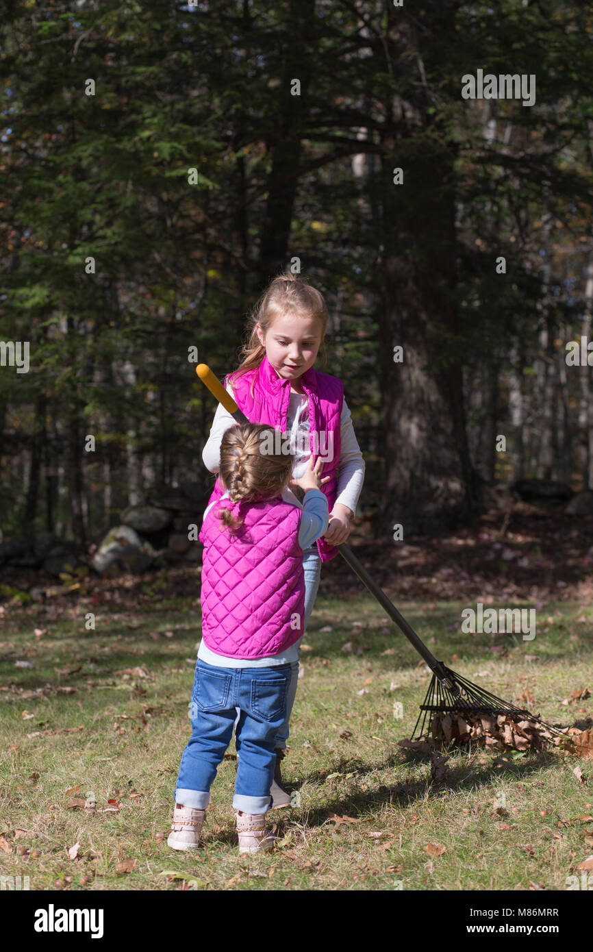 Two sisters helping rake leaves on a cool autumn day in Maine - Stock Image