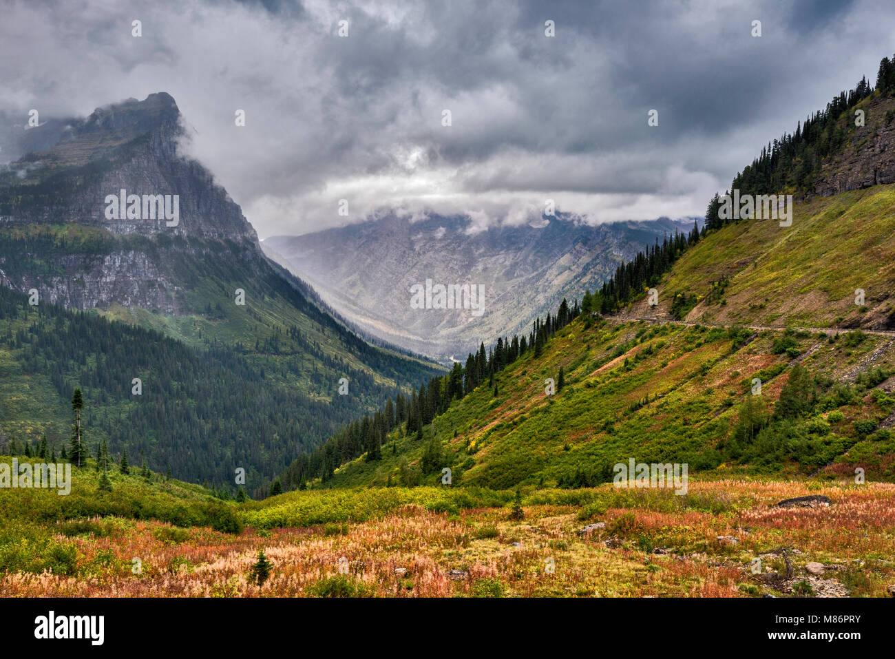Livingstone Range of Rocky Mountains, view from Going-to-the-Sun Road near Weeping Wall in Glacier National Park, - Stock Image