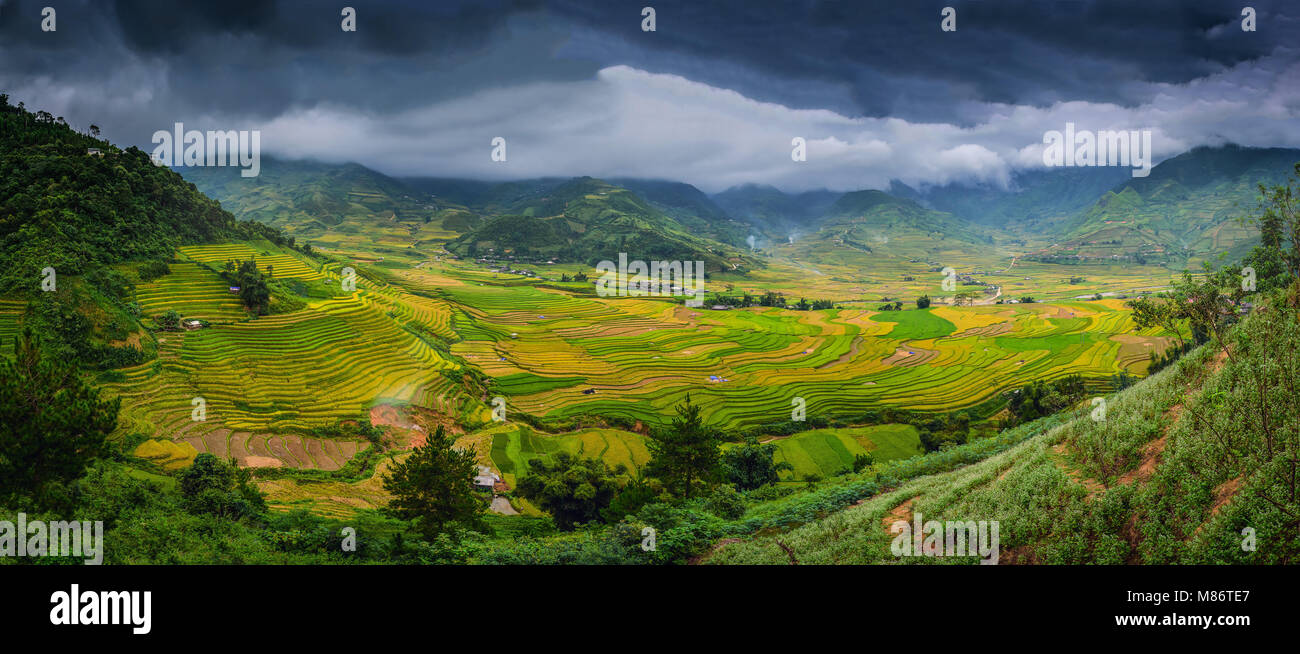 Rice fields on terraced with wooden pavilion at dramatic sky in Sa Pa, YenBai, Vietnam. - Stock Image