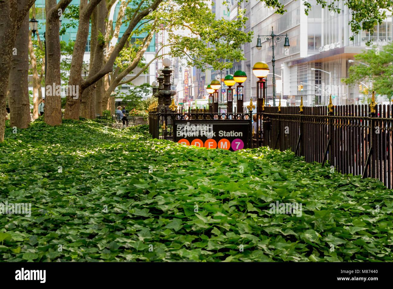 A sea of green vegetation leading to Bryant Park Subway Station entrance, Bryant Park ,Manhattan ,New York City - Stock Image