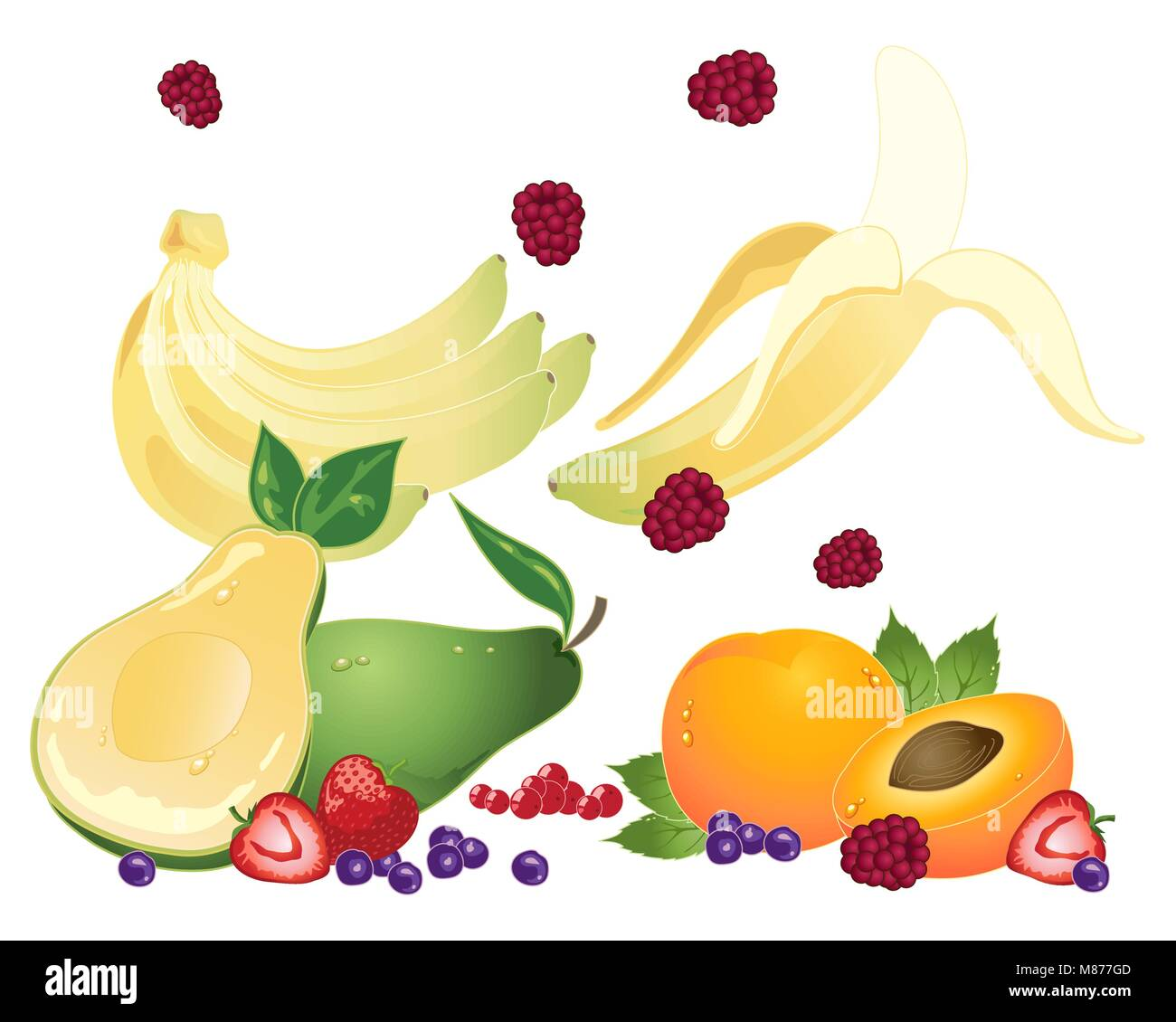 a vector illustration in eps 10 format of super fruits for healthy eating on a white background - Stock Vector