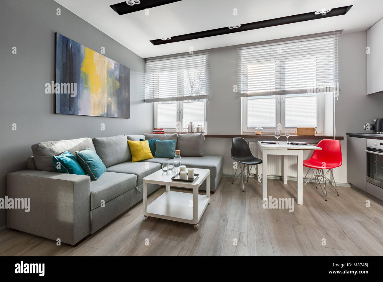 https://c8.alamy.com/comp/M87A5J/modern-studio-apartment-in-gray-with-big-sofa-and-open-kitchen-M87A5J.jpg