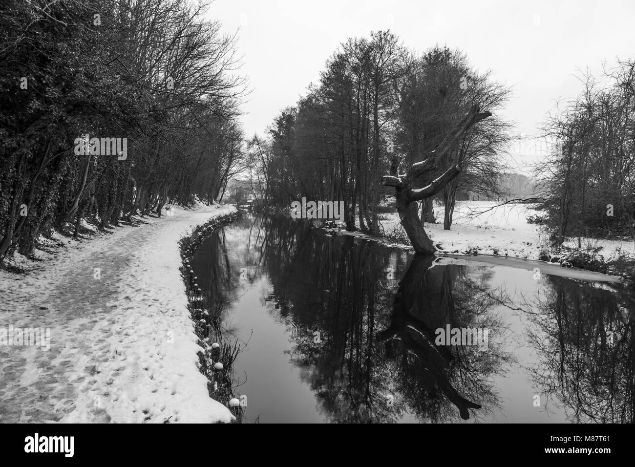 Snow covers the towpath of the Llangollen canal during late winter, near Chirk Bank - Stock Image