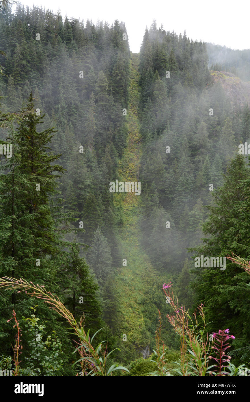 The Canada-US boundary line running up a forested hilltop separating the towns of Hyder, Alaska (below) and Stewart, - Stock Image