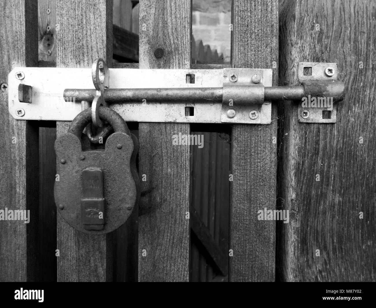 Rusty padlock clasp and staple securing timber gate to side of residential building - Stock Image