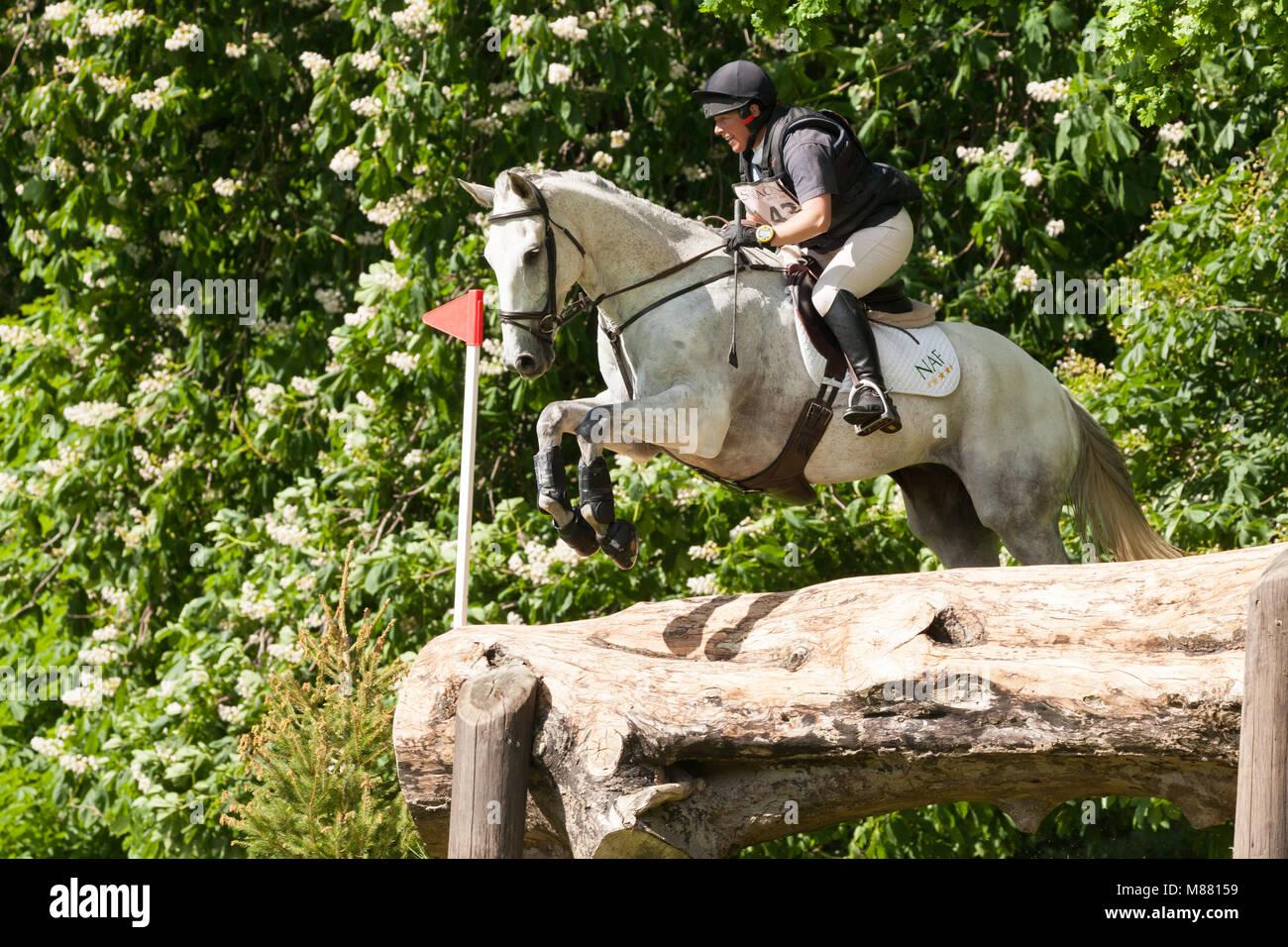 HOUGHTON, NORFOLK/ENGLAND - May 27th 2017: Houghton International Horse Trials 2017 Rosie Thomas riding Heat Wave. - Stock Image