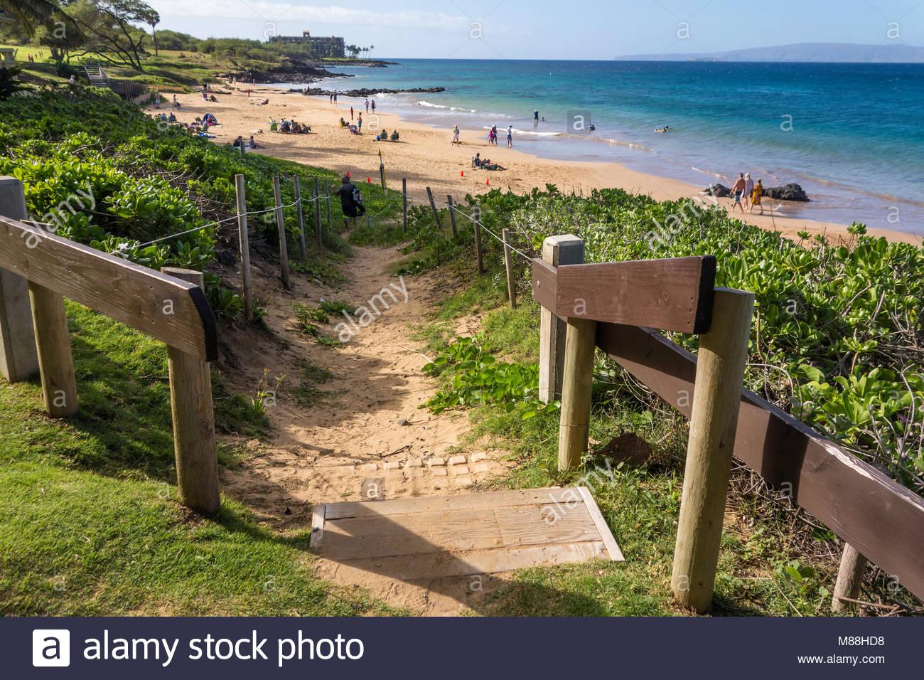 Coastal sand dune restoration by designated pathways at Kamaole Beach Park 3 island of Maui State of Hawaii USA - Stock Image