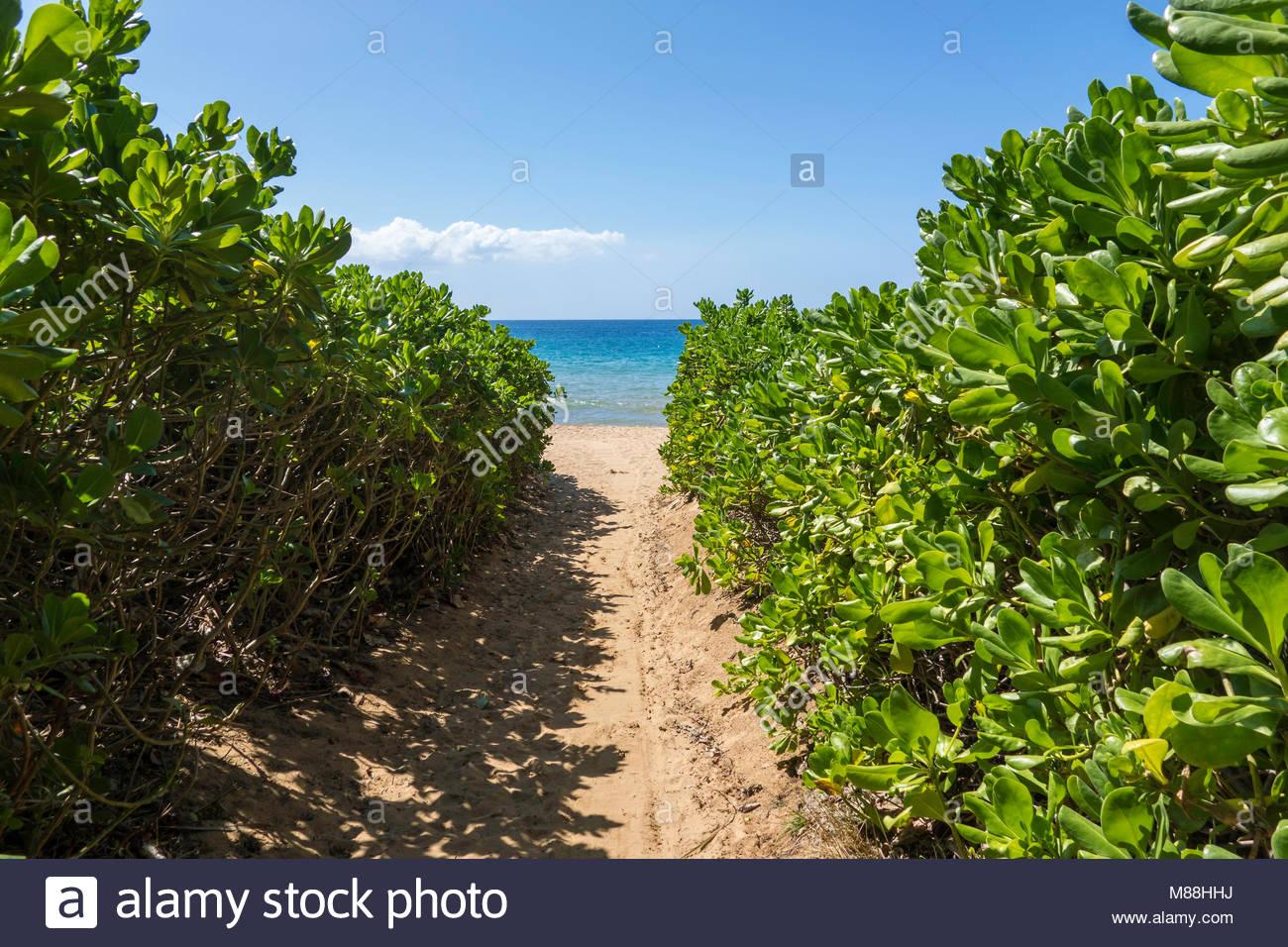 Designated public access to Keawakapu Beach on the island of Maui all beaches are public in the State of Hawaii - Stock Image