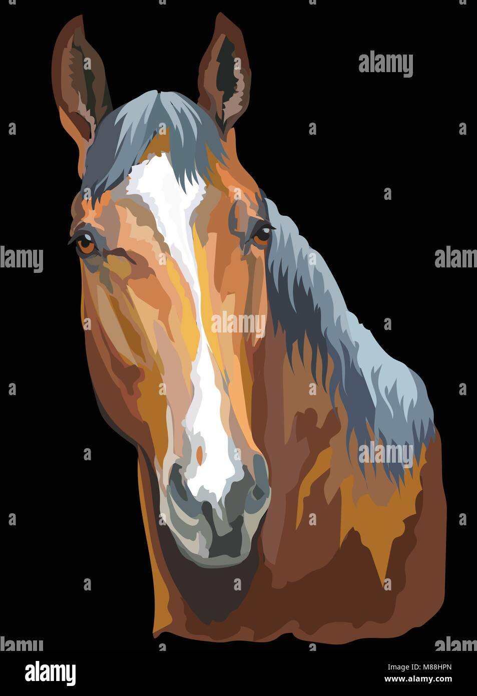 Colored portrait of Trakehner horse. Horse head isolated vector illustration on black background - Stock Vector