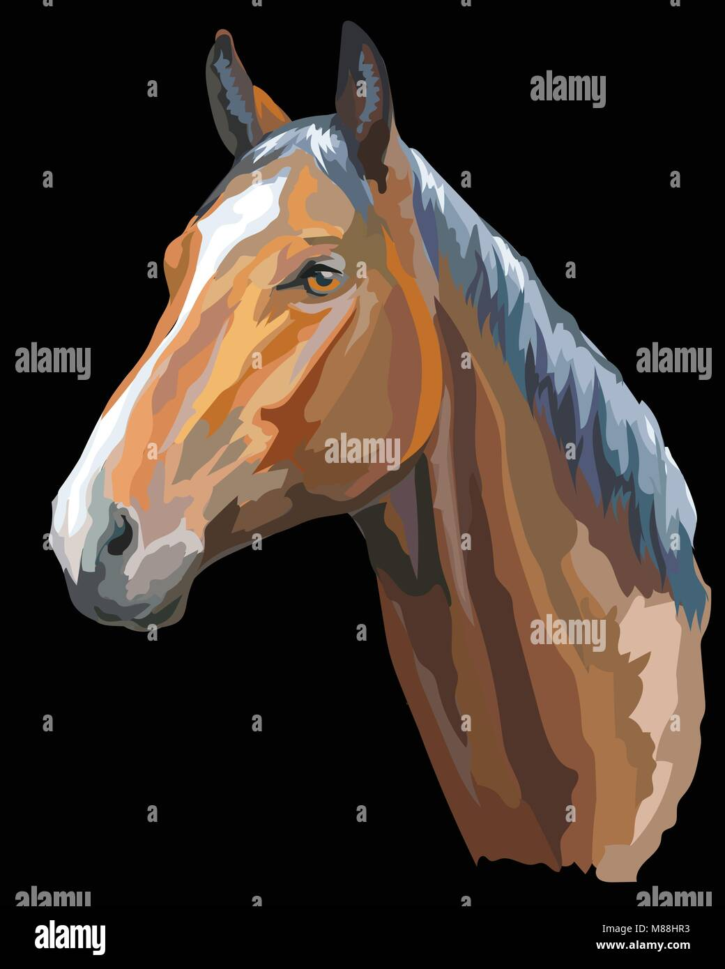 Colored portrait of Trakehner horse. Horse head  in profile isolated vector illustration on black background - Stock Vector