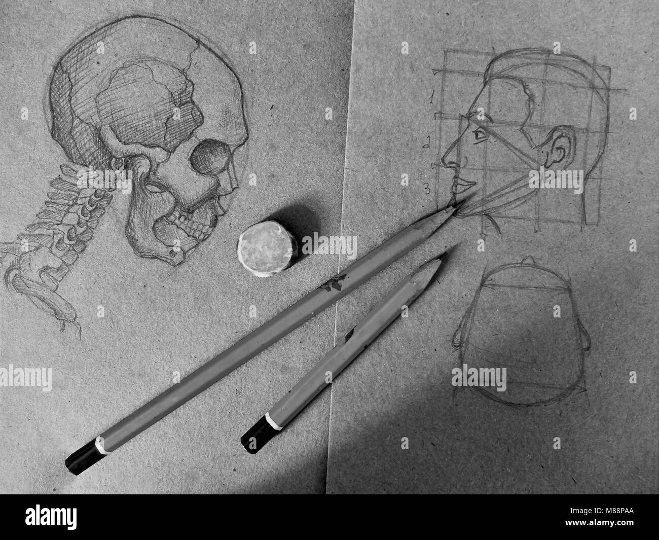 Pencil sketch of a skull and a human head in the old notebook black and white image