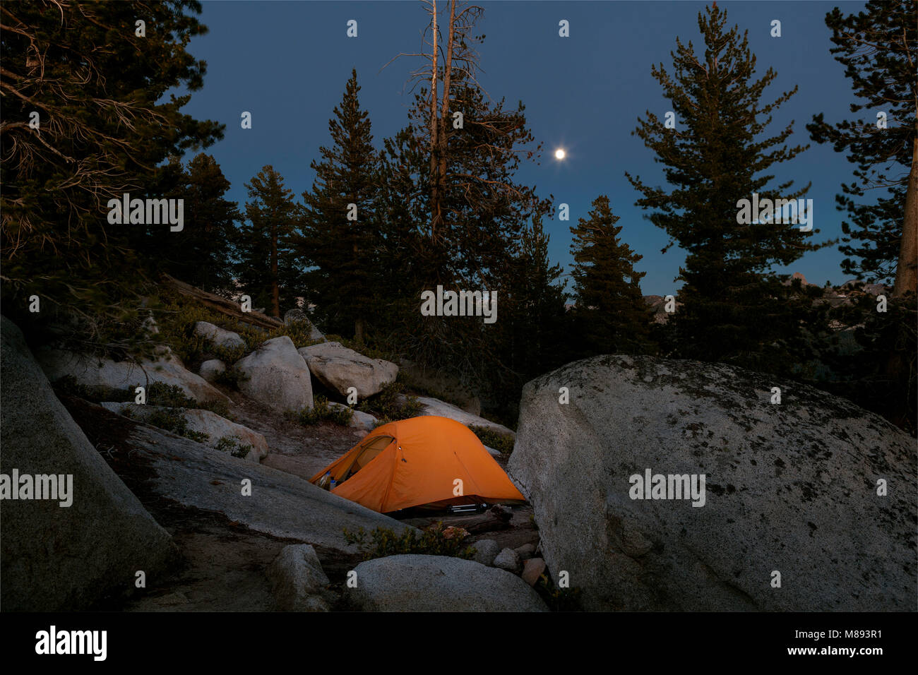 CA02873-00...CALIFORNIA -  Moon rise over campsite below Clouds Rest in Yosemite National Park. - Stock Image