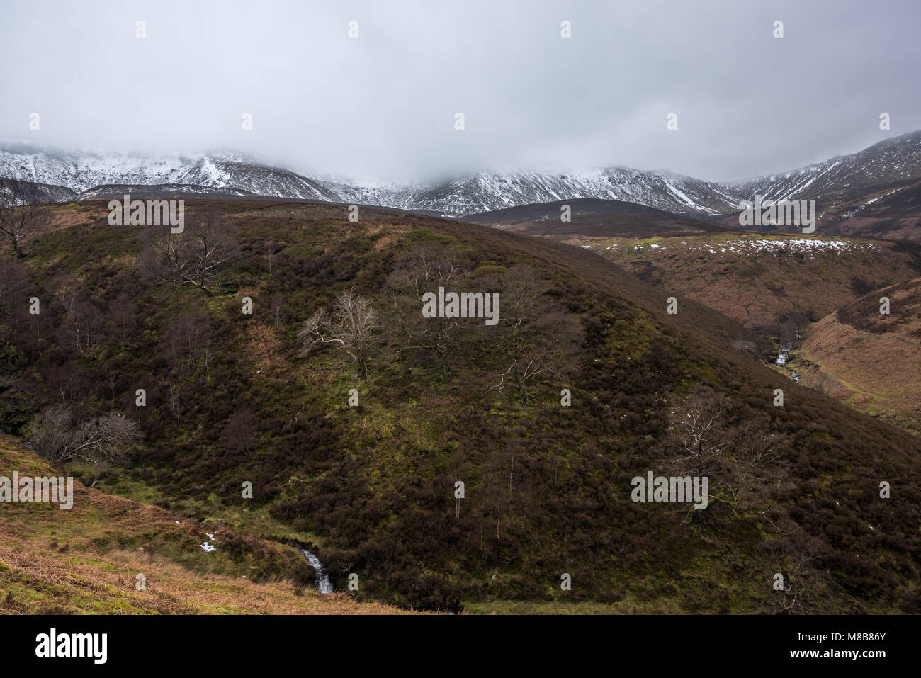 Seal Edge and Fairbrook Naze, Kinder Scout, Peak District - Stock Image