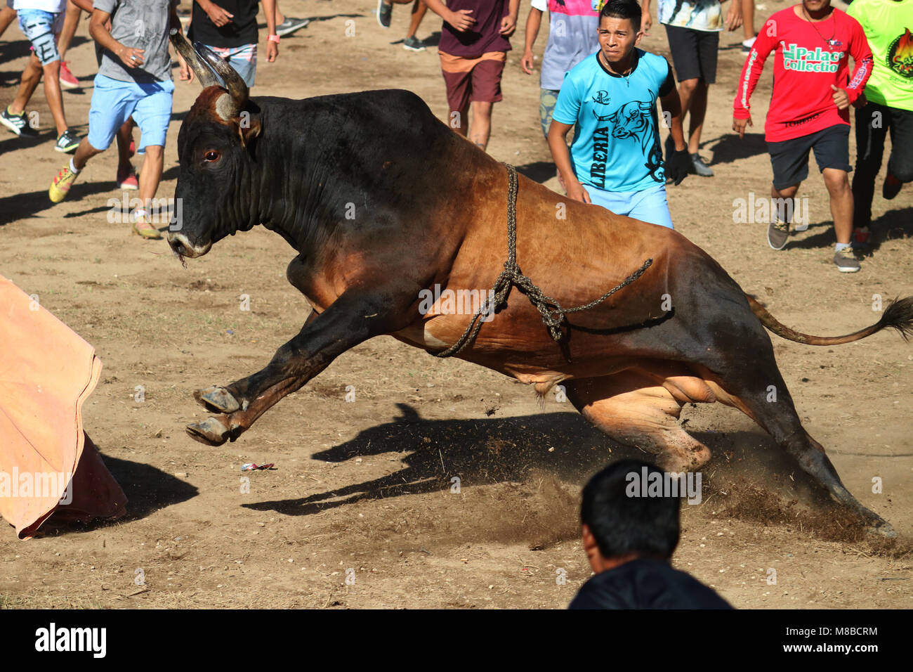 This picture was taken in a Costa Rican traditional activity. - Stock Image