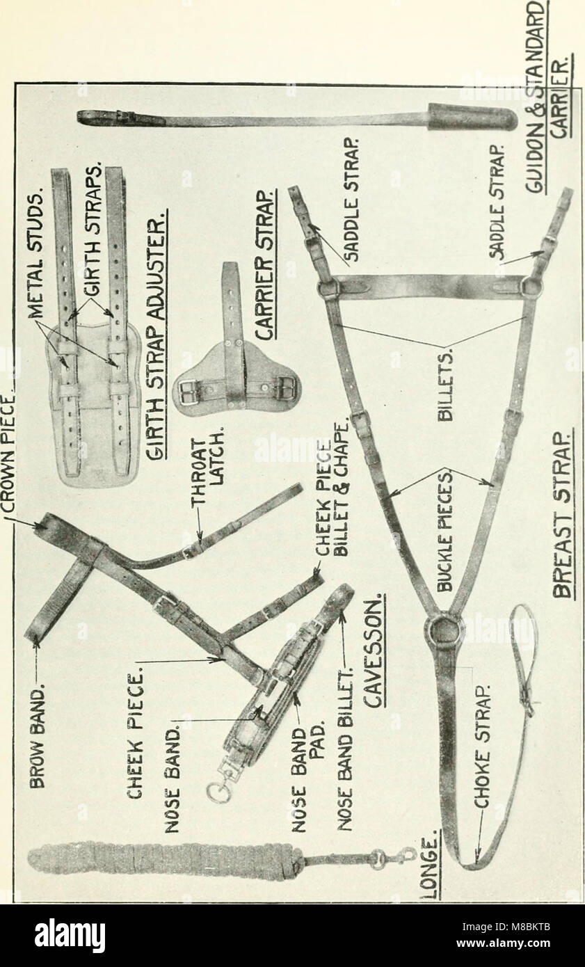 Description and directions for the use and care of cavalry equipment, model of 1912 Oct. 5, 1914 (1918) (14583382179) - Stock Image