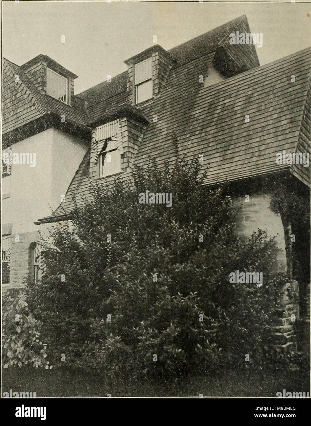 Descriptive catalogue - ornamental trees, shrubs, vines, evergreens, hardy perennials and fruits (1902) (20572112991) Stock Photo