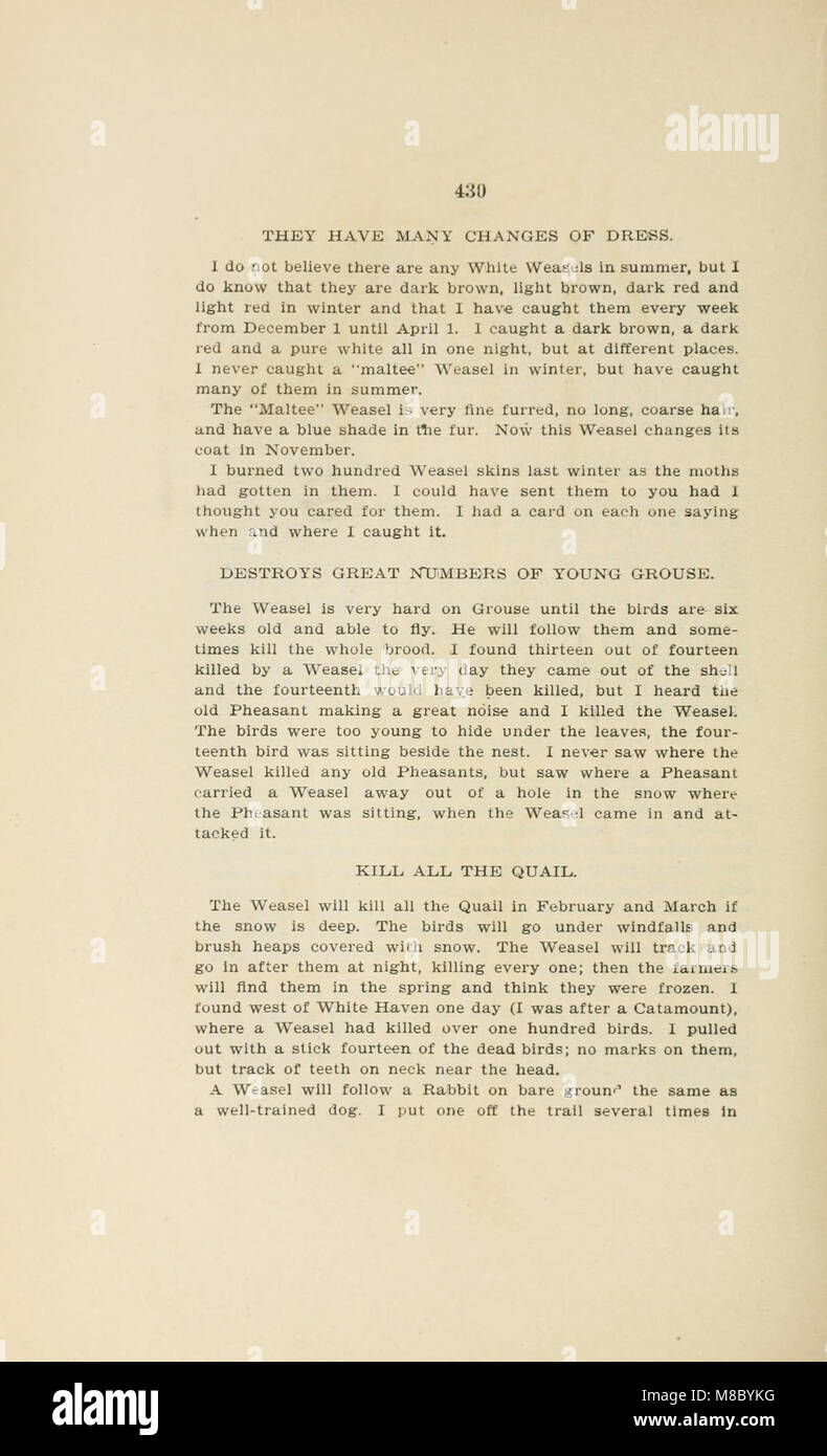 Diseases and enemies of poultry (1897) (14750616212) - Stock Image