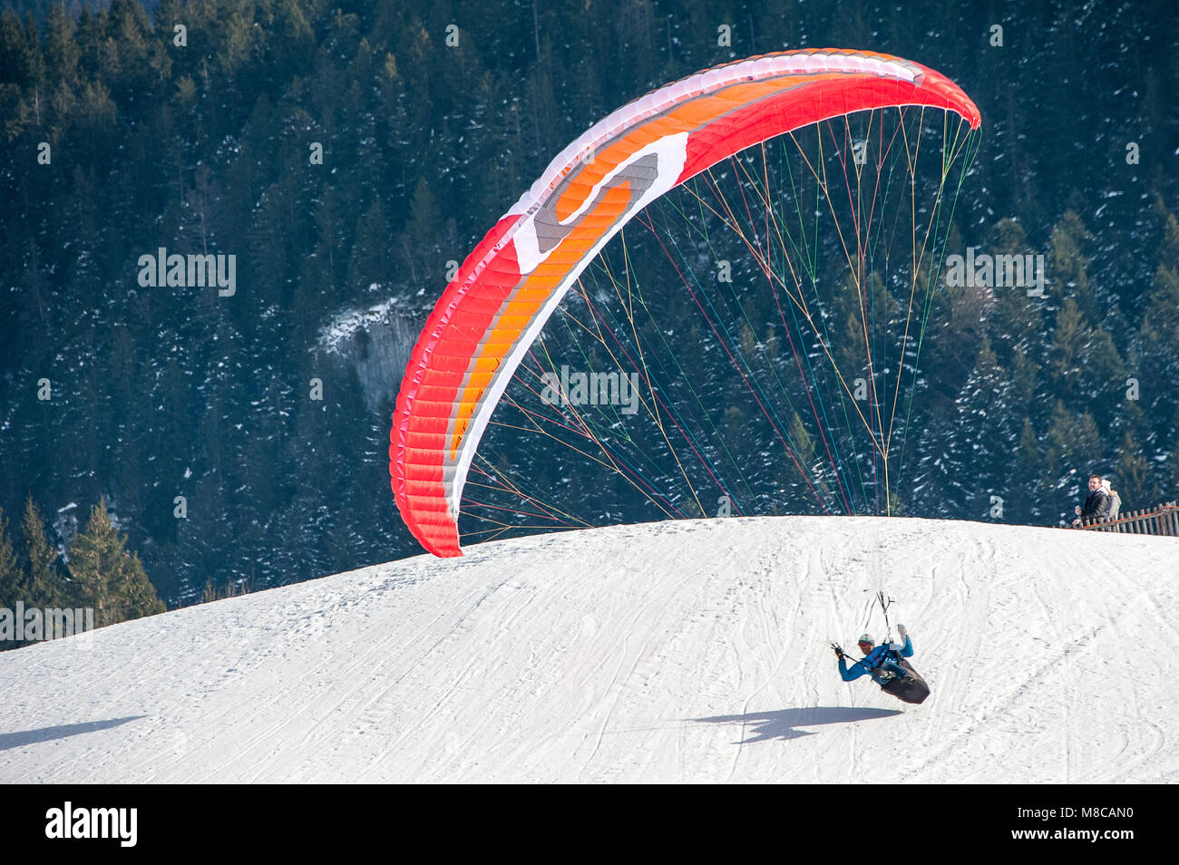Paraglider about to land in snowy mountain meadow with forests behind in the Swiss alps.. Stock Photo