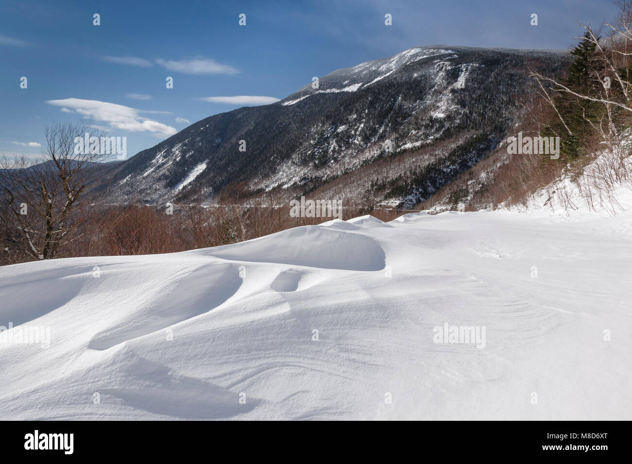 Crawford Notch State Park - Willey Range from the Maine Central Railroad in the White Mountains, New Hampshire USA Stock Photo