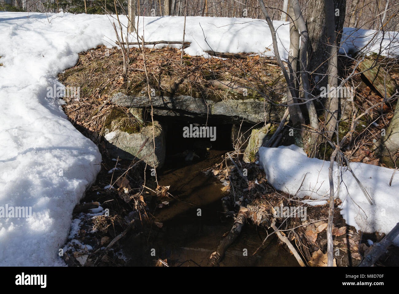 Remnants of a stone culvert along the old Profile & Franconia Notch Railroad in Franconia, New Hampshire USA. - Stock Image