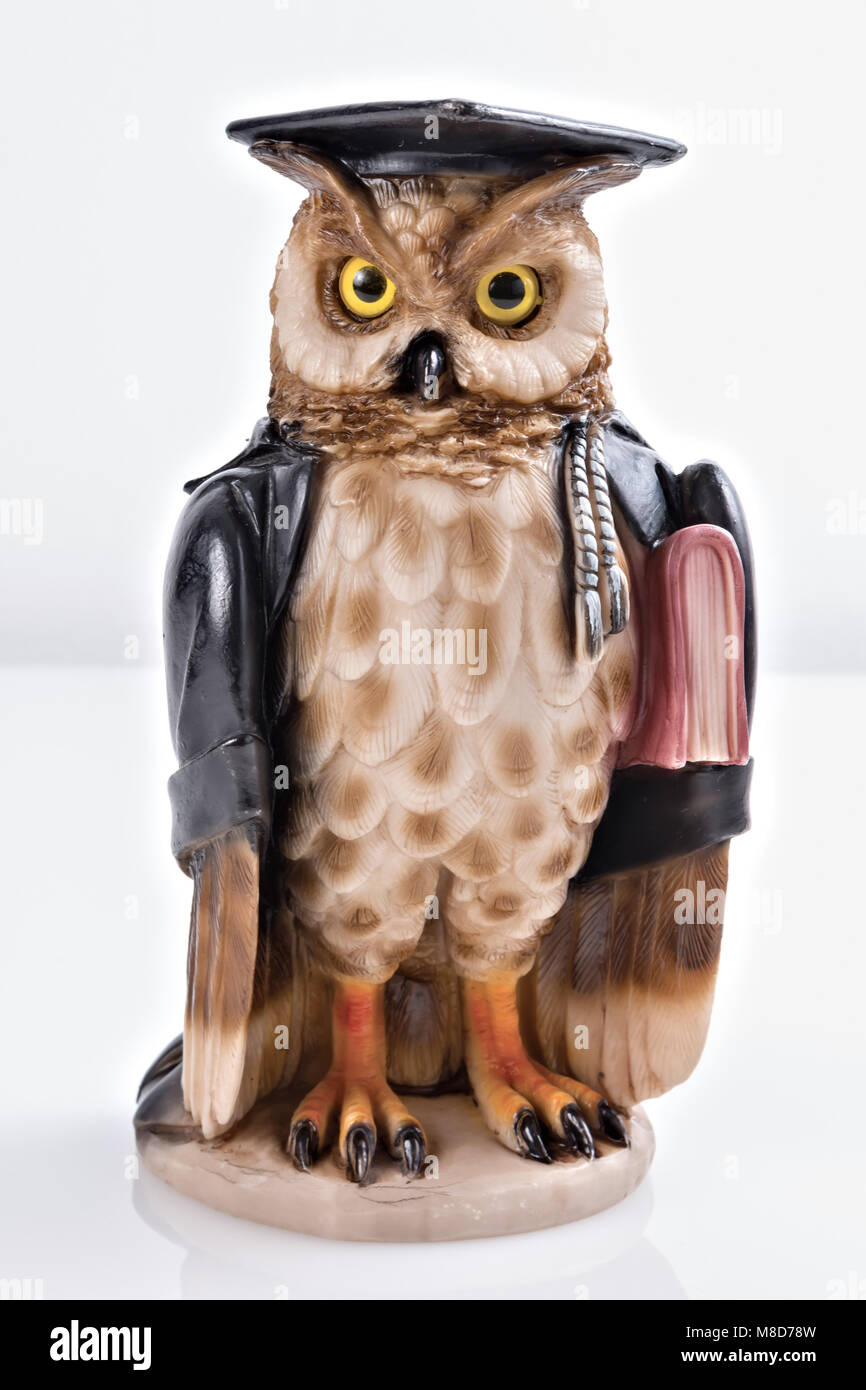 statuette owl idea magistrate - Stock Image