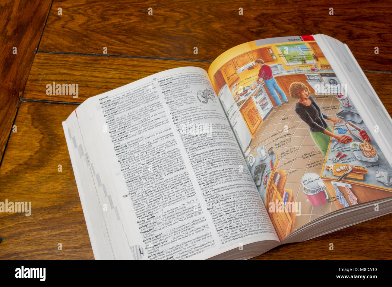 Longman Directory of Contemporary English open to show pictorial pages - Stock Image