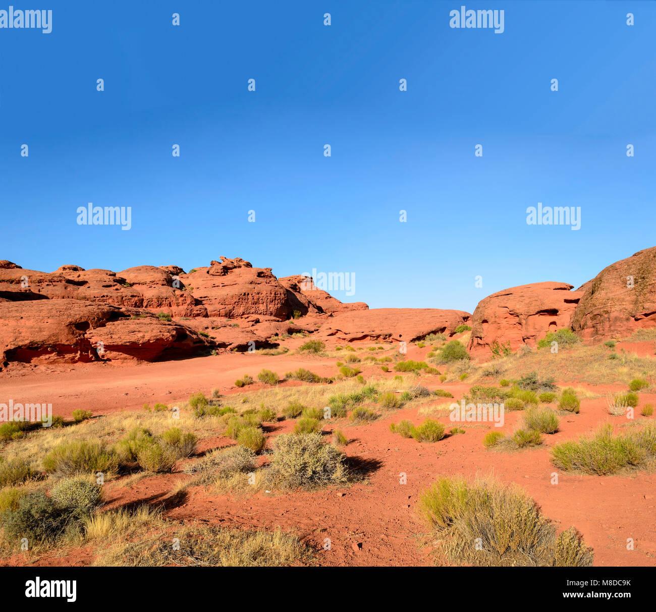 Hot, dry Mojave Desert, blue sky, plants, red dirt. - Stock Image