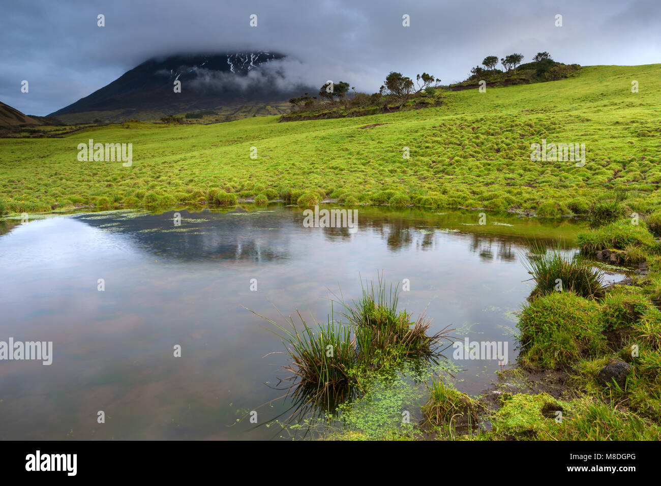 Portugal, Azoren, Pico, Montanha do Pico - Stock Image
