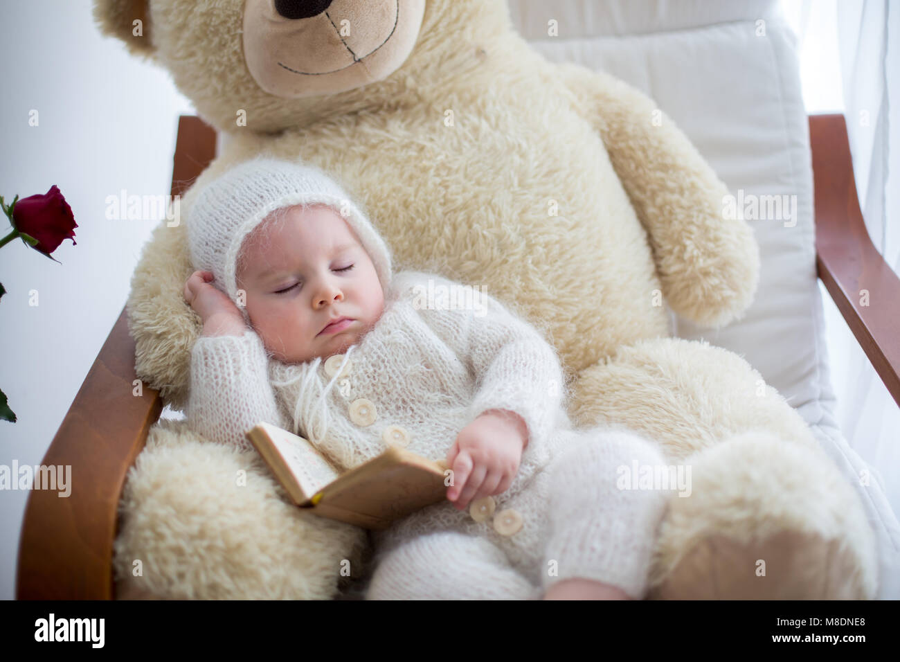 6afc6016b Sweet little baby boy, sleeping with huge teddy bear in big armchair,  littlr table with vase with roses flowers next to him