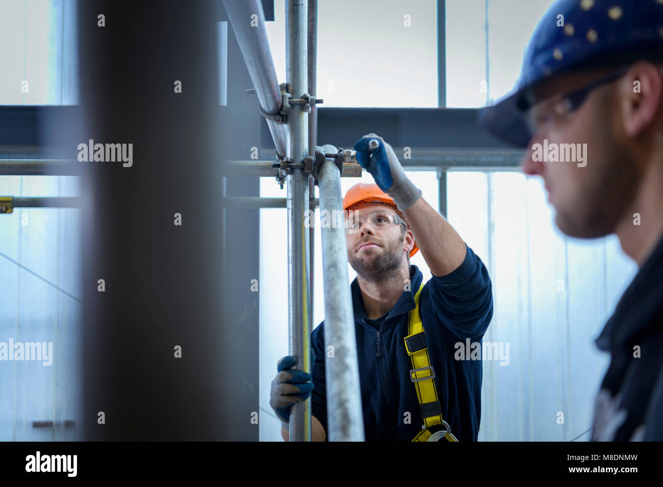 Apprentice engineers preparing and setting up scaffolding - Stock Image
