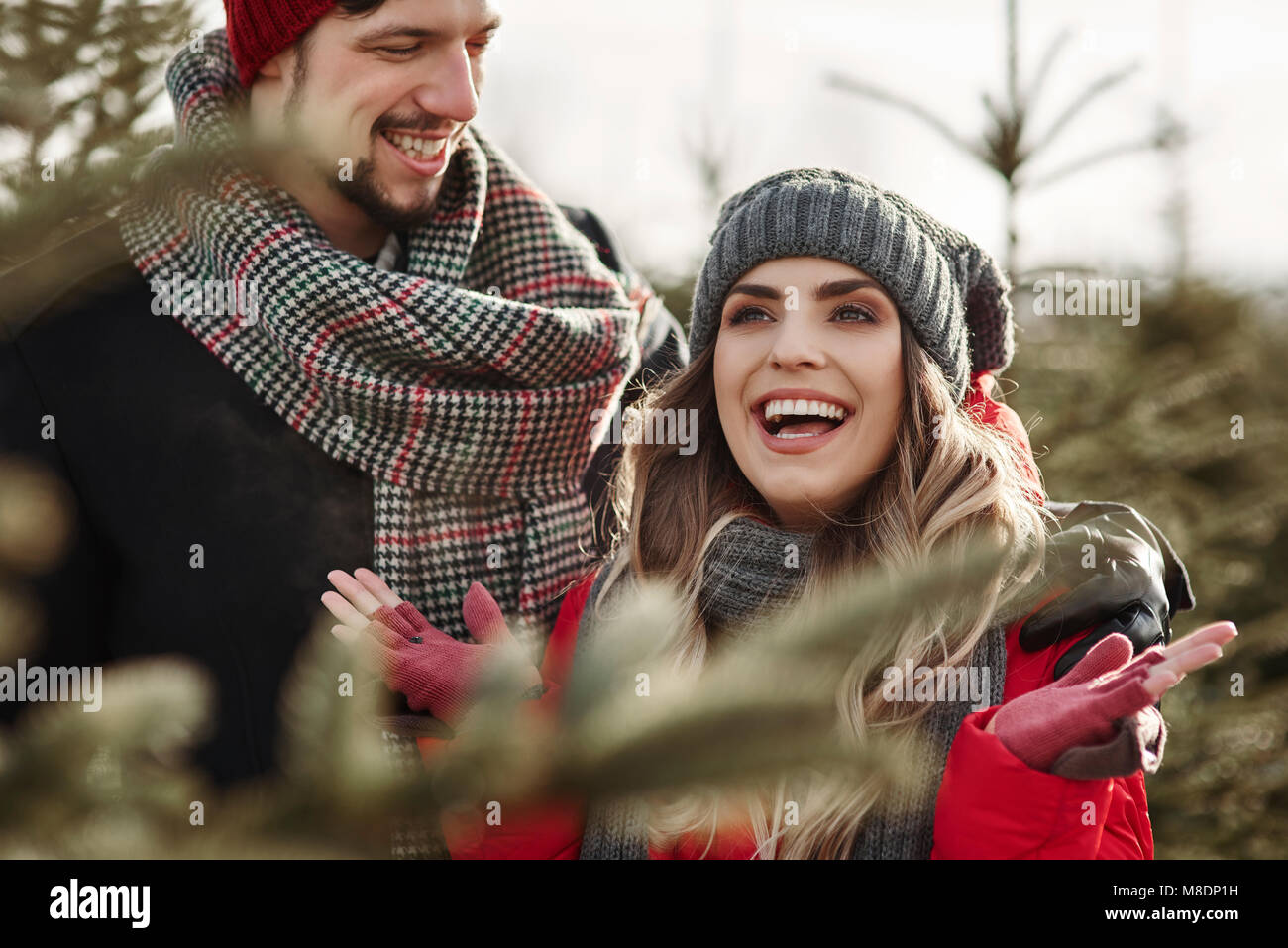 Young couple shopping for christmas tree from forest - Stock Image