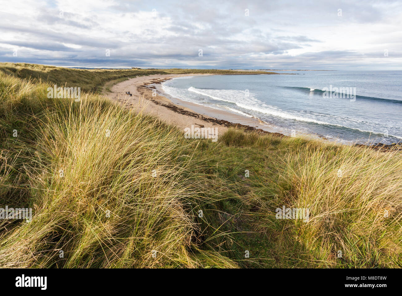 Football Hole next to Beadnell Bay in Northumberland - Stock Image