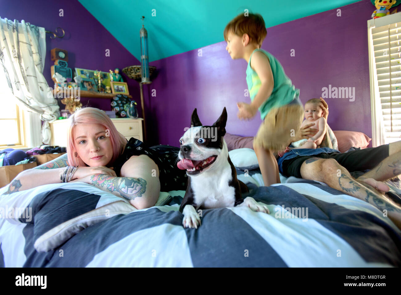 Family and pet dog on bed in bedroom - Stock Image