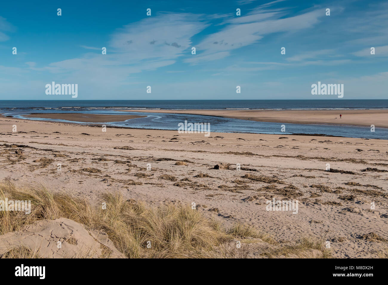 The river Aln estuary at low tide, Alnmouth, Northumberland Coast AONB, UK on a fine winter afternoon with copy - Stock Image
