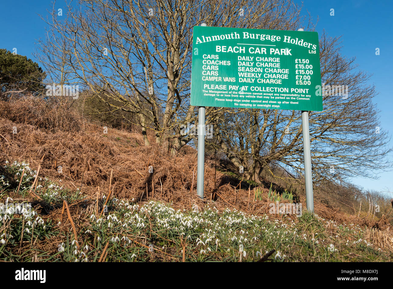 Sign displaying parking charges at Alnmouth beach car park, Northumberland Coast AONB, UK, with flowering snowdrops - Stock Image