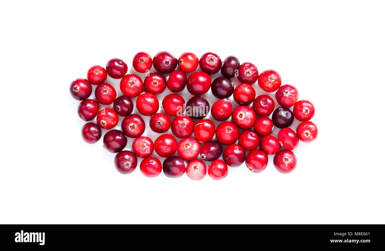 Cranberries isolated on white macro view. Red ripe detailed forest berries cut out background. up view photography. - Stock Image