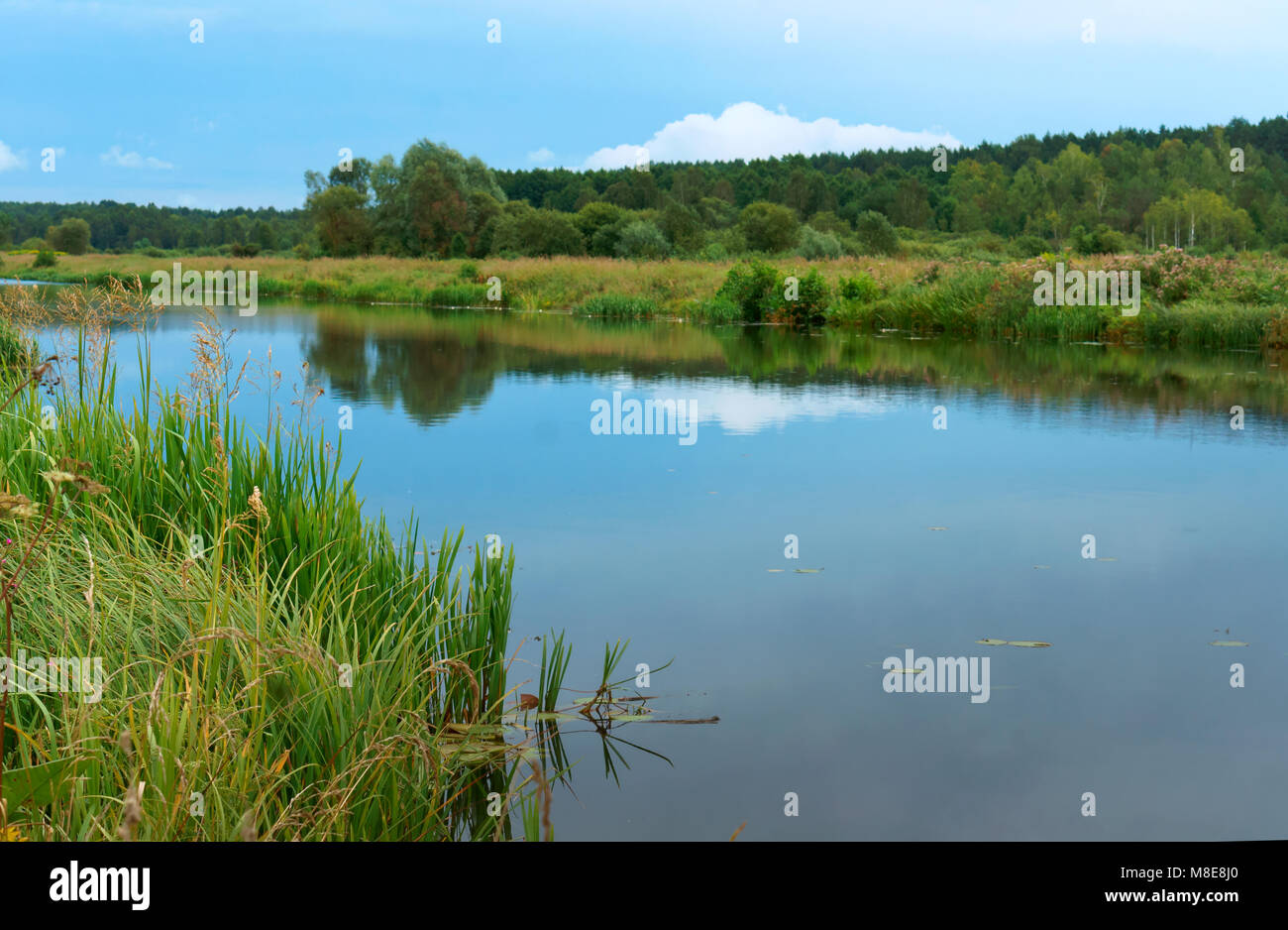 smooth channel with reflection of the sky, long river with overgrown green banks, artificial pond - Stock Image