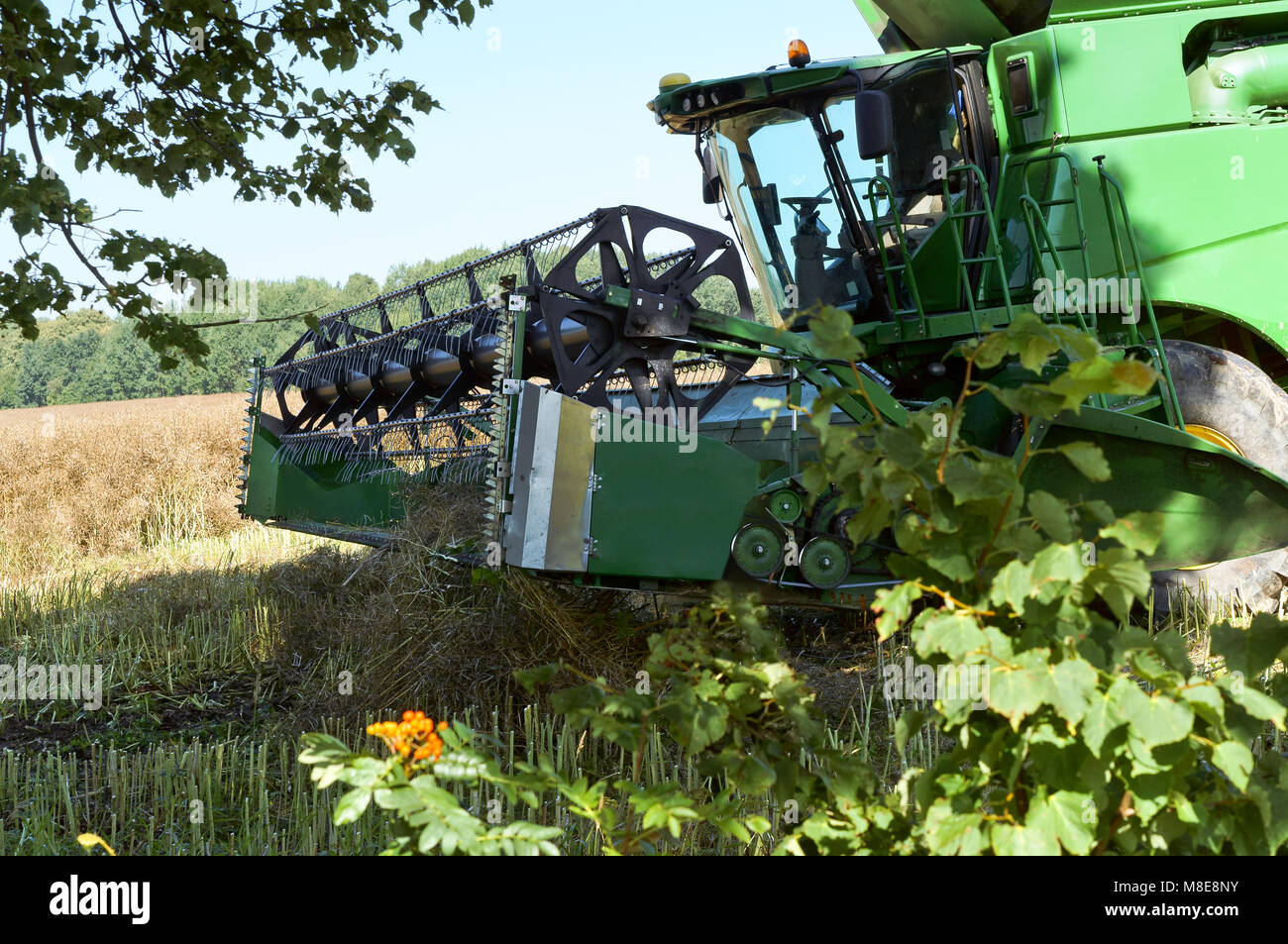 agricultural machine operate in the field, grain harvesting machines operate in the field, agricultural land - Stock Image