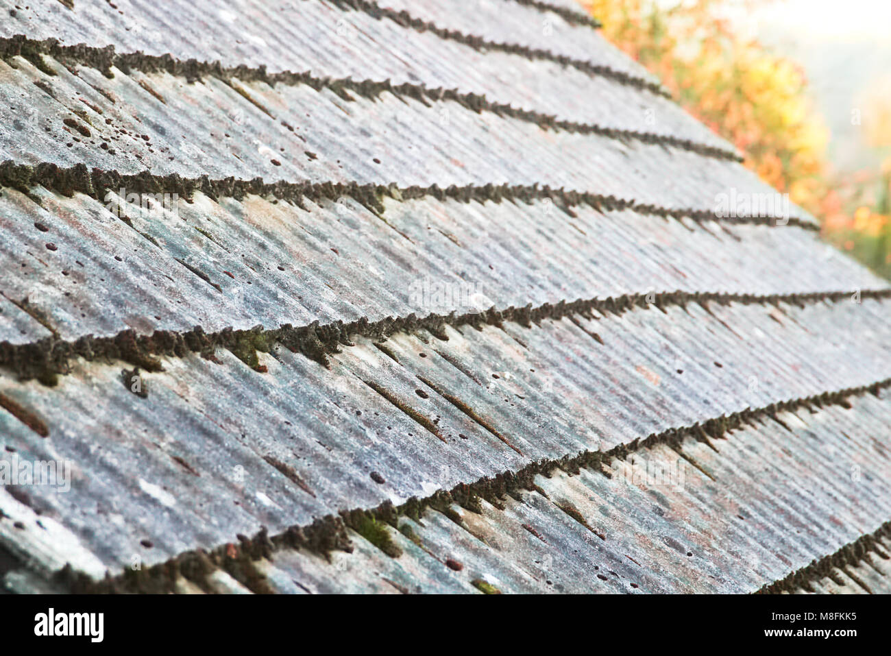 Deteriorating Roof Shingles Roofing Costs House Flipping