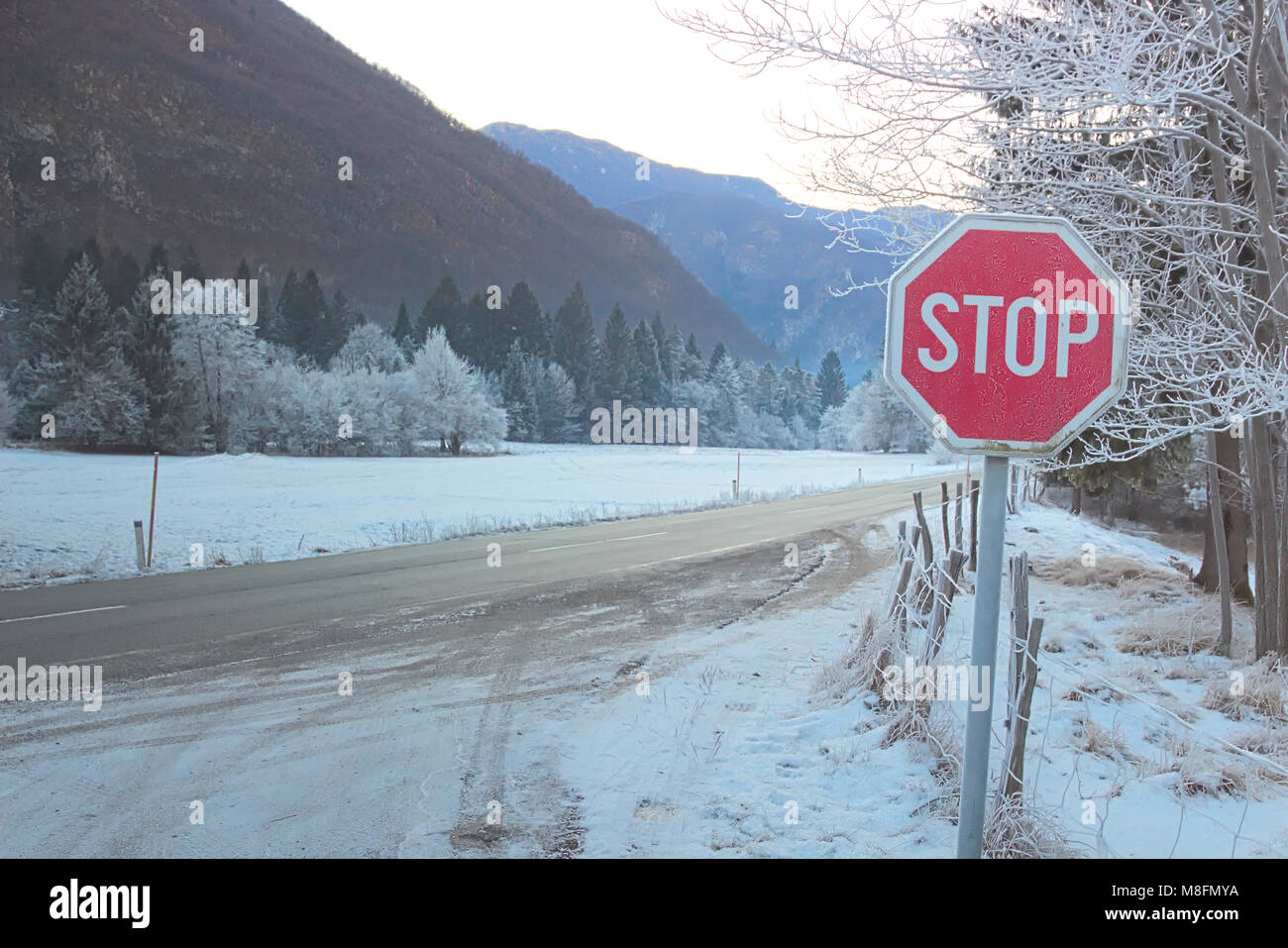 Traffic Stop Sign on Snowy Road - Stock Image