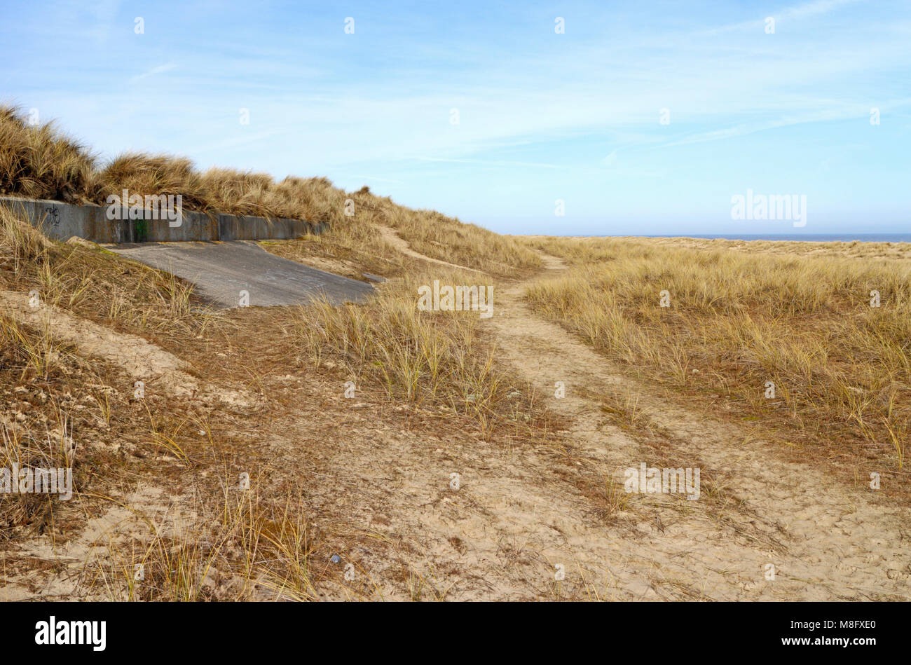 A view of secondary dunes with old sea wall protection on the East Norfolk coast at Wintertron-on-Sea, Norfolk. - Stock Image
