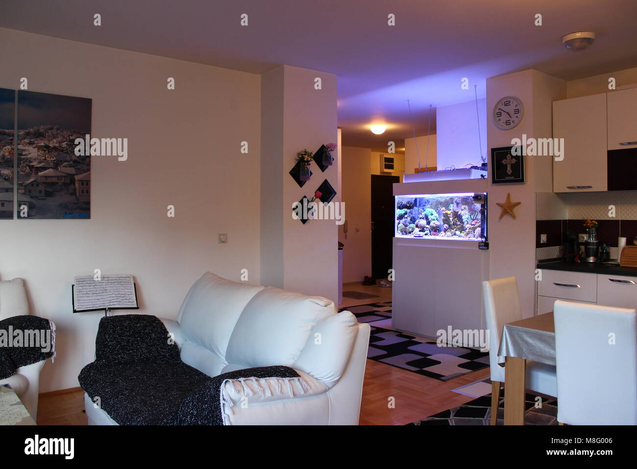 Coral reef aquarium in home interior like one of the most beautiful addition - Stock Image