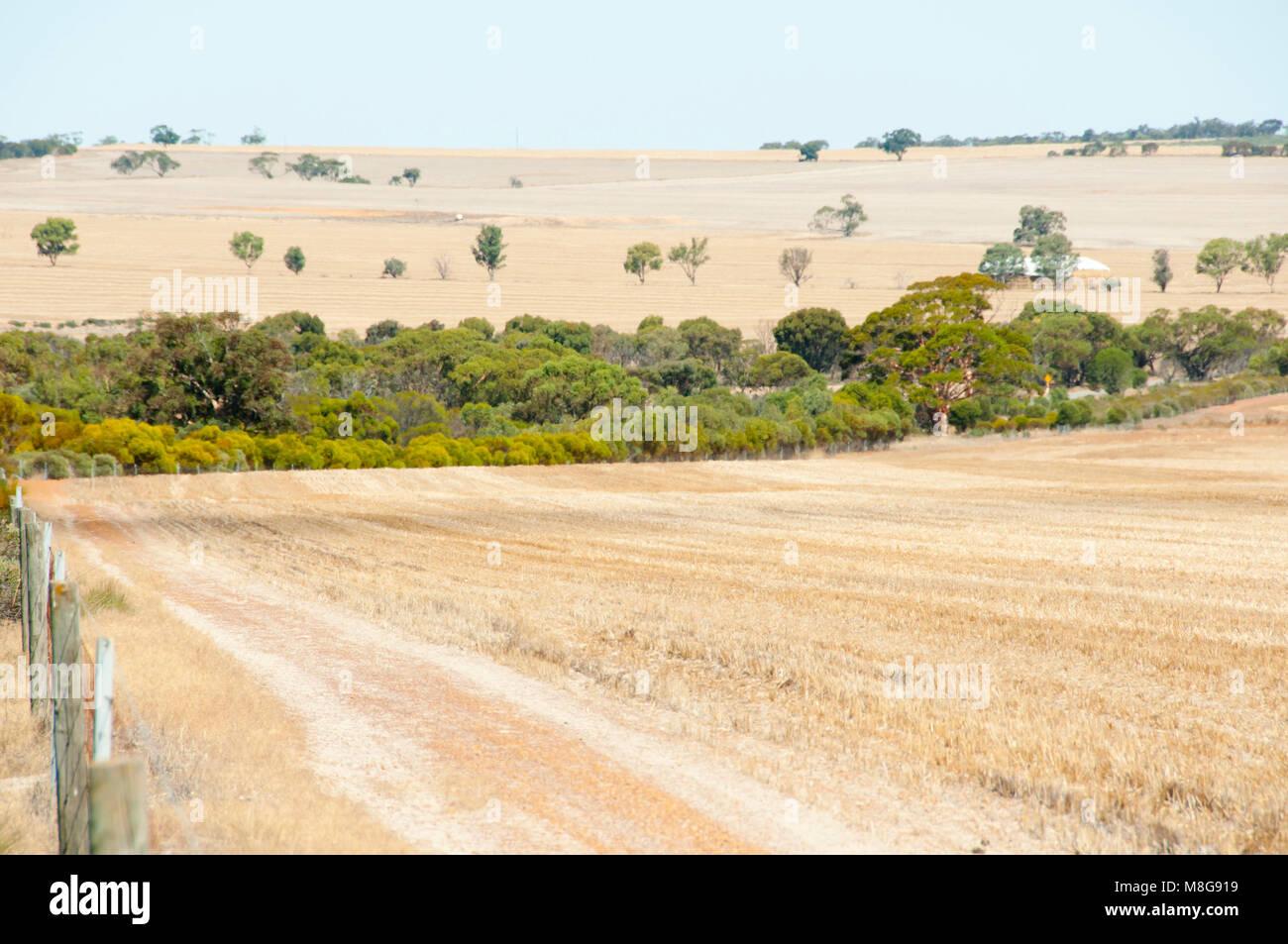 Harvested Wheat Fields - Australia - Stock Image