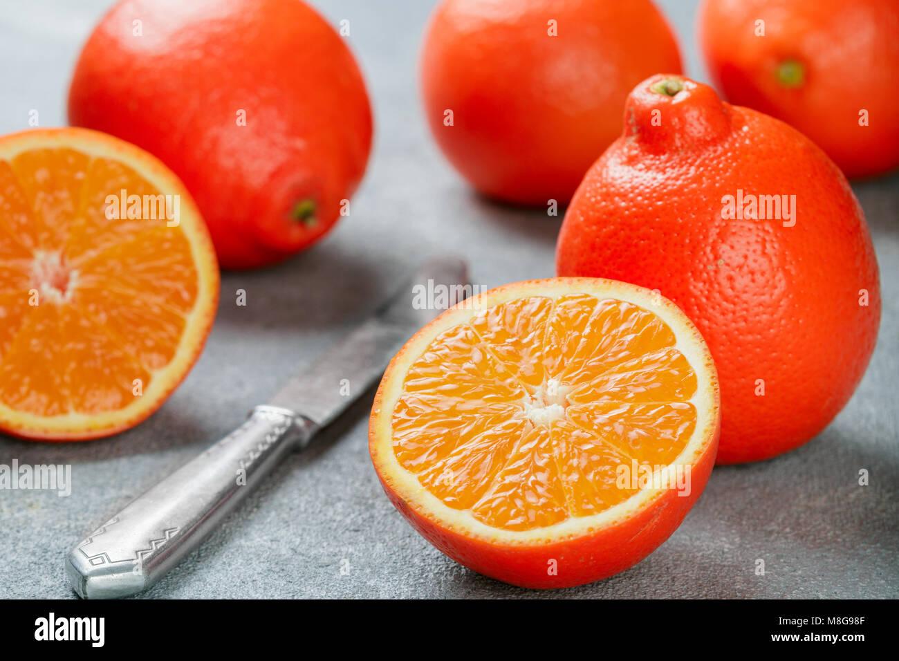 Mineola. Tangerine. Juicy sweet orange citrus fruit whole and sliced on a concrete background. Selective focus - Stock Image