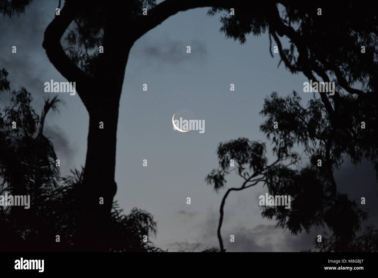New moon at twilight - Stock Image