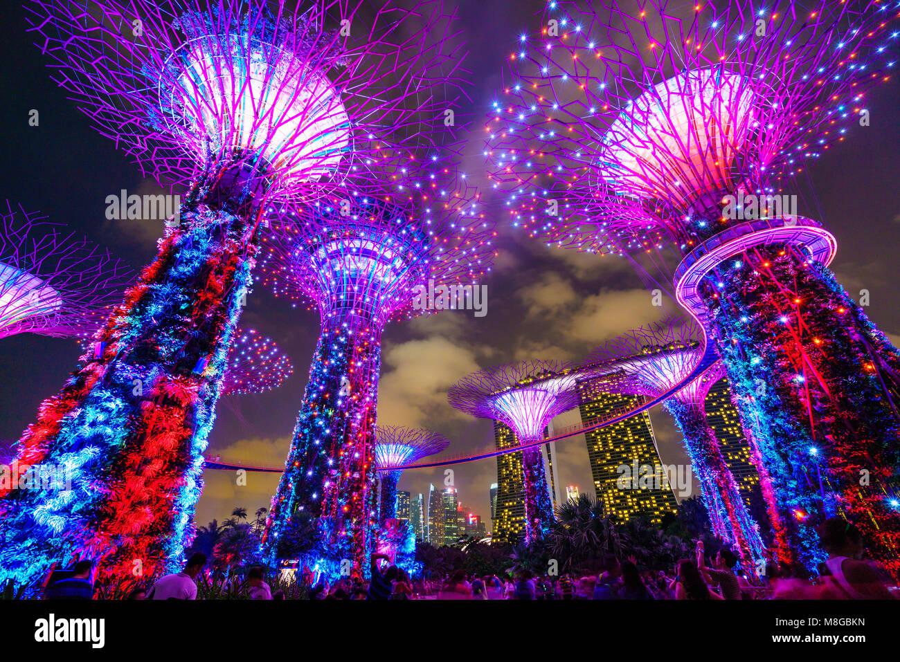 Supertree Grove Illuminated At Night Gardens By The Bay Marina